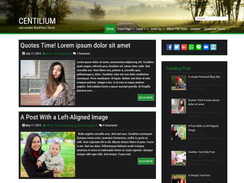 Centilium WordPress Theme