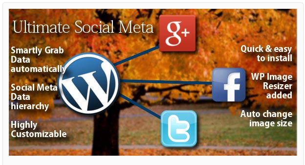 Social Paradoxes And Meta Problems: 5 Best WordPress Social Plugins You Must Install