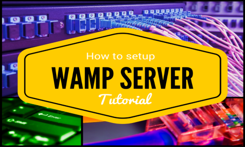 WampServer - How to Install and Setup