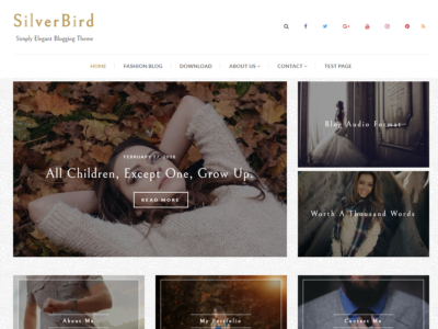 Silverbird - Elegant WordPress Blog Theme